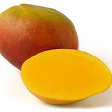 mango tommy atkins guatemala elbefruit