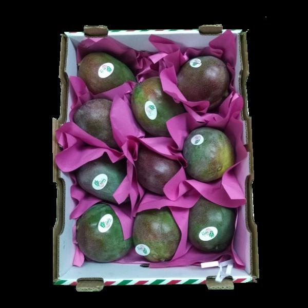 mango-kent-elbefruit